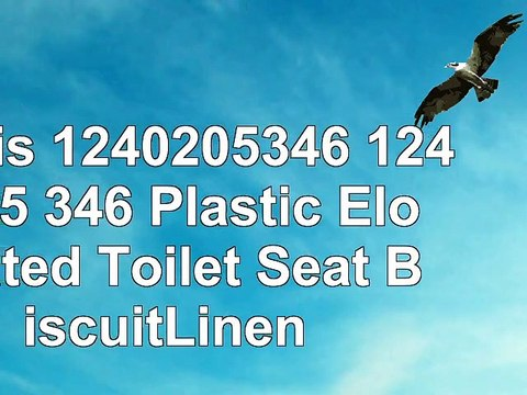Stupendous Bemis 1240205346 1240205 346 Plastic Elongated Toilet Seat Biscuitlinen Creativecarmelina Interior Chair Design Creativecarmelinacom