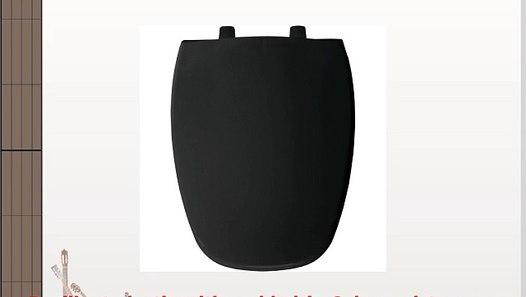 Incredible Bemis 1240205 047 Plastic Elongated Toilet Seat White Creativecarmelina Interior Chair Design Creativecarmelinacom
