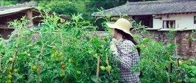 Petite forêt Bande-annonce VO (Comédie 2019) KIM Tae-Ri, RYU Jun-yeol