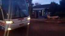 Danos no asfalto provocado por ônibus incomodam moradores do Parque dos Ipês