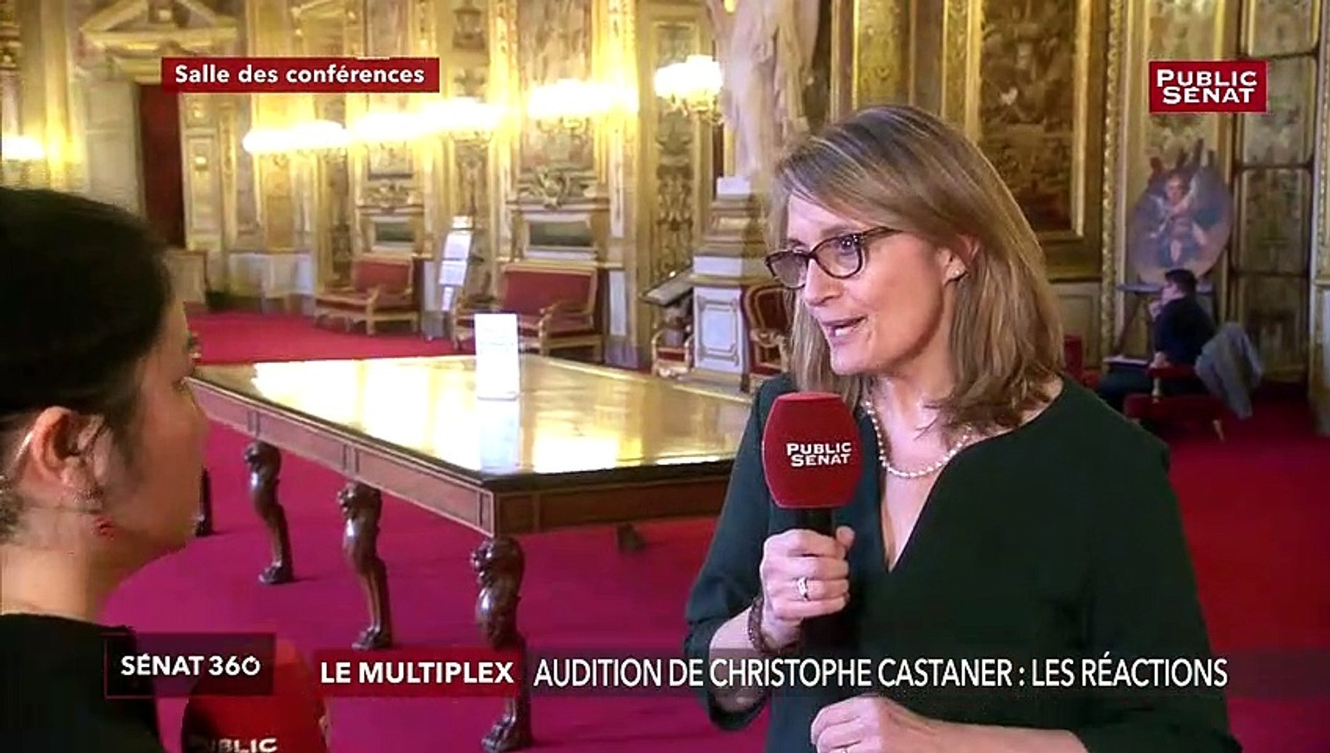 Audition de Castaner: réaction de Sophie Primas