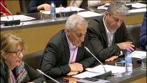 Commission des affaires économiques et Commission du développement durable : Présentation du rapport de l'OPECST sur les scénarios de prospective technologique pour un arrêt des ventes de véhicules thermiques à l'horizon 2040 - Mercredi 20 mars 2019