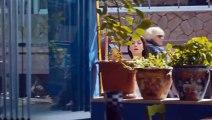 Sühan Venganza y Amor  Capitulo 42 Completo HD - Capitulo 42 Sühan Venganza y Amor   Completo HD