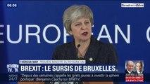 Brexit: après une réunion à Bruxelles, quelles sont les options des Britanniques pour un report ?