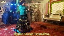 Pashto Wedding Dance   Pashto Dj   Pahsto Hijra Dance   Afghani Girls Dance  Pashto Dance On Pahsto Song