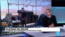 Plateau du Golan: propos de Trump, Damas jure de reprendre le Golan