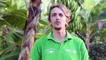 """""""A l'INRA, nous développons de nouvelle forme d'agriculture comme l'agriculture climato-intelligente"""""""