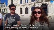 À Poitiers, des militants demandent l'arrêt des cirques avec des animaux
