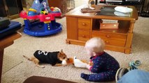 Funny Babies and Dogs are Best Friends