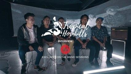 Tropical Hornbills - Interview