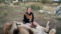 Elle, elle n'a vraiment pas peur des lions