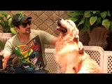 Heavy Petting: Zayed Khan and White Collar