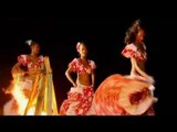 Experience Sega, the national dance and musical form of Mauritius