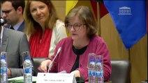 Assemblée parlementaire franco-allemande : Mme Nathalie Loiseau, ministre auprès du ministre de l'Europe et des Affaires étrangères et M. Michael Roth, ministre adjoint chargé des Affaires européennes  - Lundi 25 mars 2019