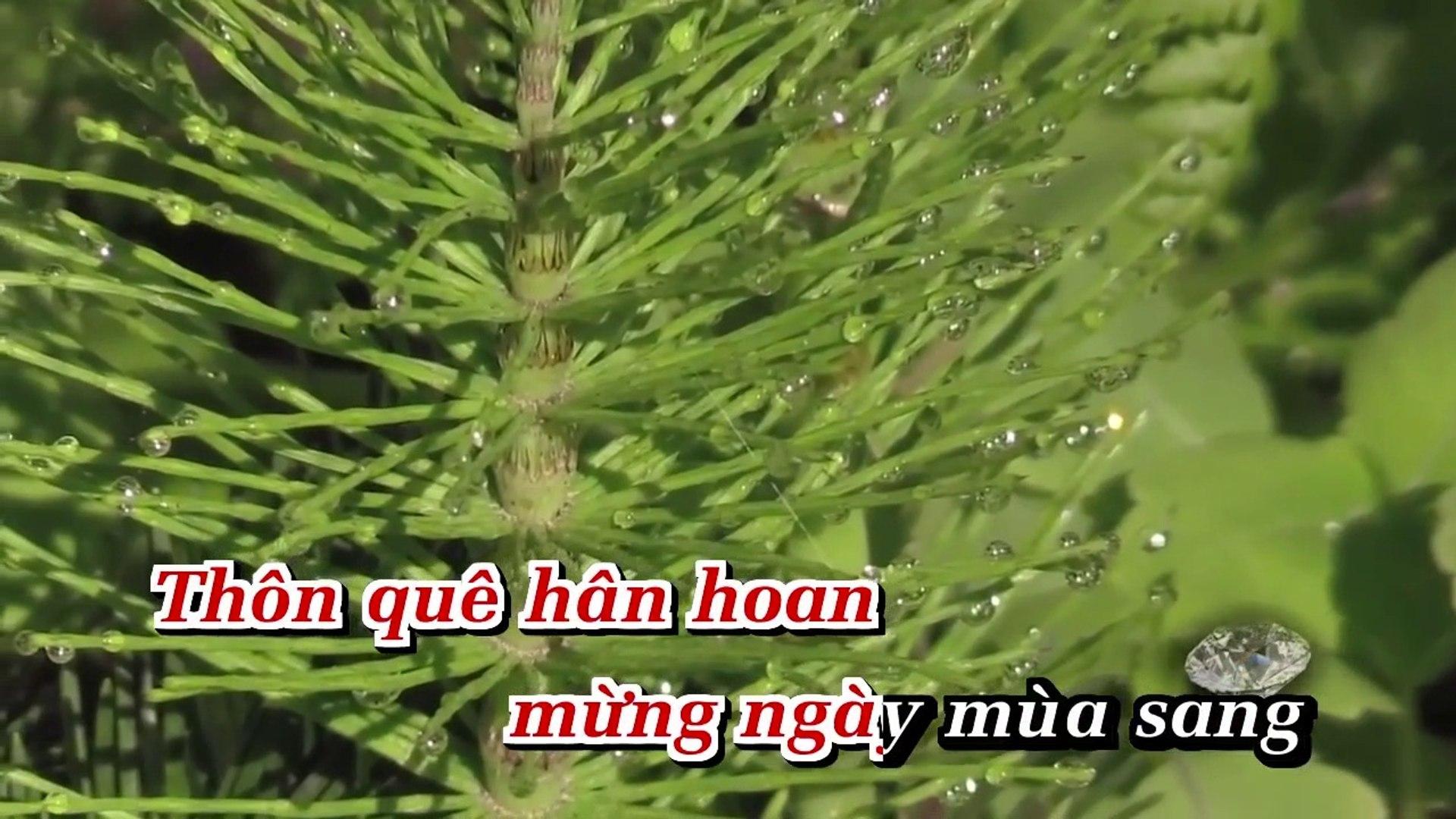 [Karaoke] Bức Họa Đồng Quê - Boneur Trinh [Beat]