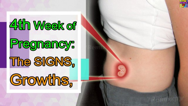 WEEK 4 PREGNANCY, THE SYMPTOMS, GROWTHS AND PREGNANCY CARE TIPS. - video  dailymotion