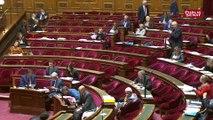 Trottinettes électriques : les débats au Sénat