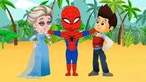 Paw Patrol mauvais rêves des épisodes complets - Retour à l'école ÉCHOUE pour enfants et comptines!