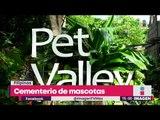 Cementerio de mascotas de verdad | Noticias con Yuriria