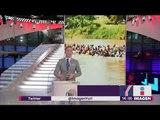 Migrantes cruzan ríos con sus hijos con tal de entrar a México   Noticias con Yuriria