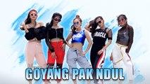 Rheyna Morena - Goyang Pak Ndul (Official Music Video)