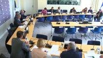 Délégation collectivités territoriales : Débat sur les propositions susceptibles d'être formulées par la Délégation à la suite du Grand débat national  - Mercredi 27 mars 2019