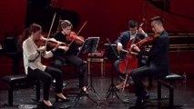 Brahms : Quatuor à cordes op.51 n°2 (Allegro non troppo)