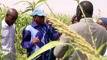 Déclaration du Collectif Citoyen pour la Défense du Foncier Périmètre Baobab (Bud Sénégal) de Sangalkam
