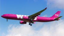 Wow Air Declared Bankruptcy And Cancelled All Flights