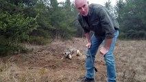 Cet homme courageux tente de libérer un loup qui a la patte prise dans un piège