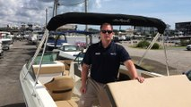 2019 Sea Ray SPX 230 Outboard Boat For Sale at MarineMax Wrightsville Beach