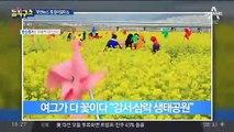 [핫플]사투리로 전하는 부산 소식 '붓싼뉴스' 인기