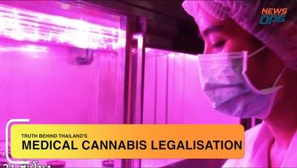 Medical Cannabis Legalisation in Thailand