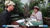 Cinéma : Agnès Varda, de la Nouvelle Vague au documentaire