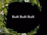 Als die Tiere den Wald verließen - 28. Bulli-Bulli-Bulli