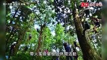 奇職百科》超危險職業!全台第一人 把爬樹當飯吃