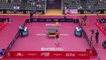 Tomokazu Harimoto vs Liang Jingkun | 2019 ITTF Qatar Open Highlights (R16)