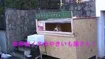 Cet adorable chien tient son propre stand de patates douces au Japon