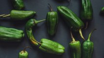 These 11 Recipes Will Hook You on Hatch Chiles