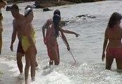 Las medusas invaden las playas malagueñas