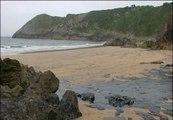 Un vertido de fuel de una central térmica obliga a cerrar playas asturianas