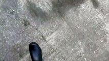 【라이브바카】 우리계열카지노【⊙『『H H T 7 9 7、CㅇM』』⊙】【플레이텍카지노】라이브바카 ⊙『『H H T 7 9 7、CㅇM』』⊙ 슬롯머신어플