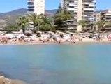 Las playas de la Comunidad Valenciana vuelven a la normalidad tras la llegada de peces raya a la costa