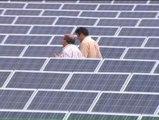 Los inversores en huertos solares afirman que la reforma energética va a arruinarlos