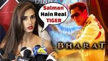 Salman Khan STEALS Disha Patani from Tiger Shroff -  Bharat Movie Star Cast