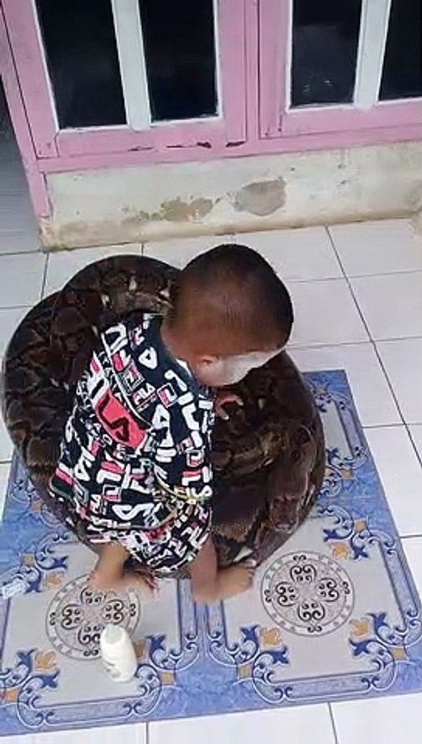 Kid Plays with Patient Snake