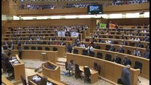 El PDeCAT inicia el pleno del Senado exhibiendo banderas con la palabra 'Democracia'
