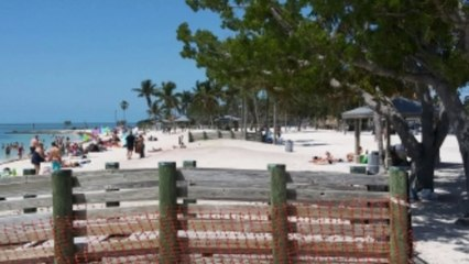 Sombrero Beach review marathon key