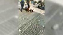Cuerpos y fuerzas de seguridad, personal sanitario y ciudadanos, héroes de Barcelona
