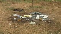 Explosión en un concurso de paellas deja heridas a cinco personas